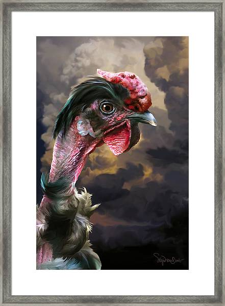 34. Turken Framed Print