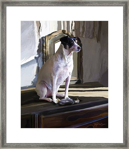 38. Ugly Dog Framed Print