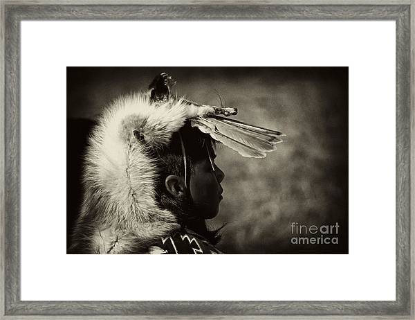 4 - Feathers Framed Print