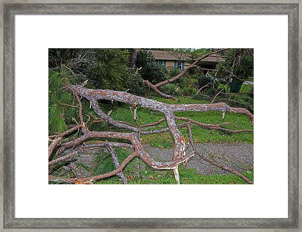 Hurricane Irma Residential Storm Damage Framed Print by Millard H. Sharp