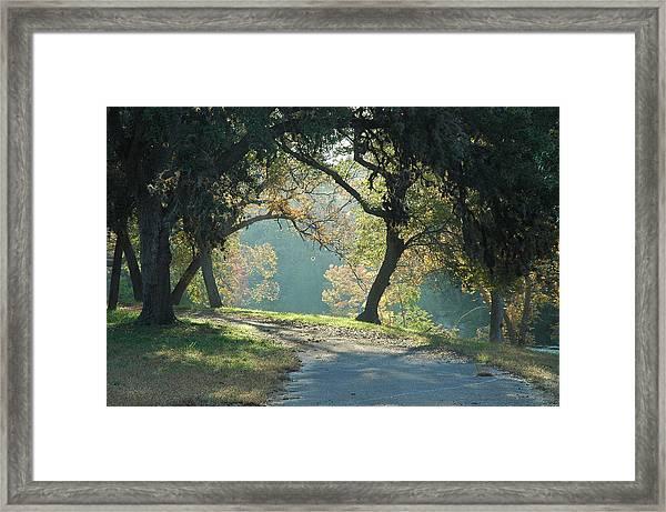 Morning Light Framed Print by Robert Anschutz