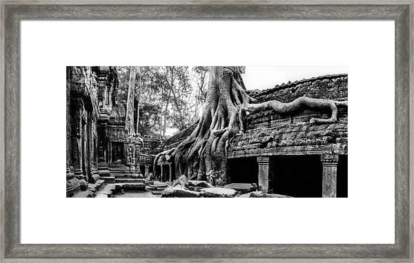 Ta Prohm Ruin Framed Print