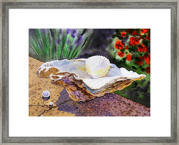 Sea Shell And Pearls Morning Light Framed Print