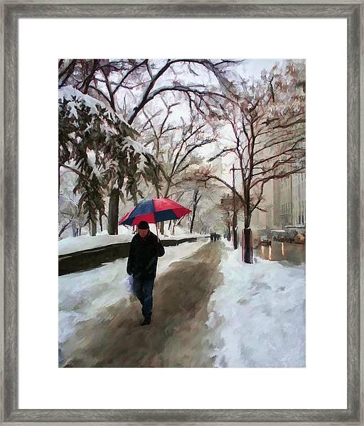 Snowfall In Central Park Framed Print