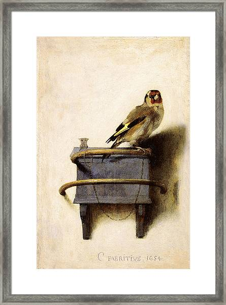 The Goldfinch Framed Print