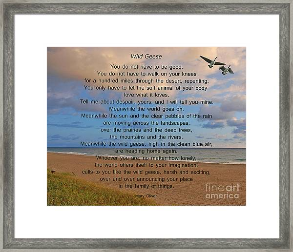40- Wild Geese Mary Oliver Framed Print