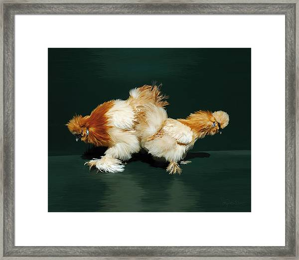 45. Sand Silkies Framed Print