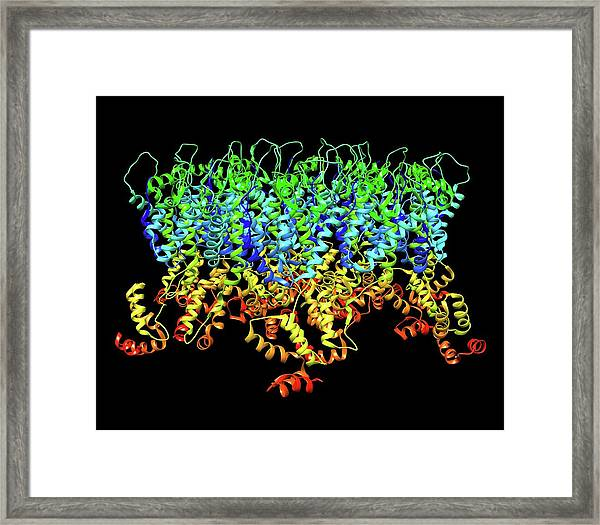 Hiv-1 Capsid In Intact Virus Particle Framed Print