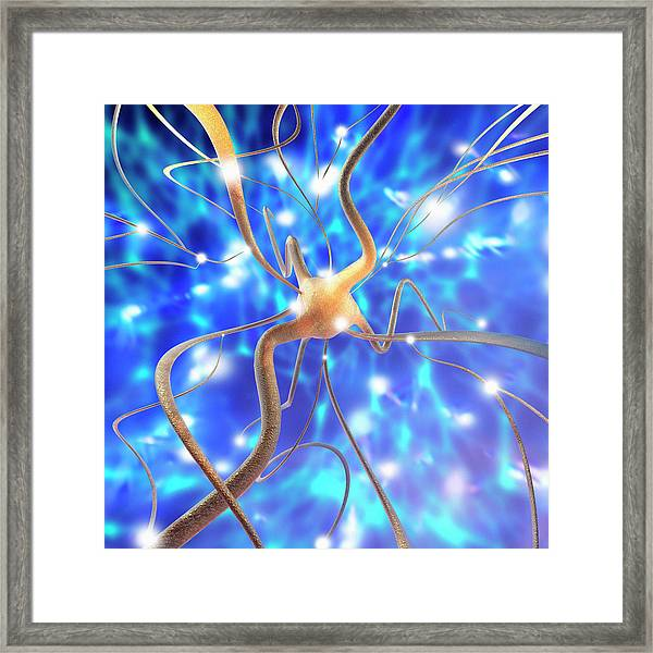 Nerve Cell Framed Print by Mehau Kulyk