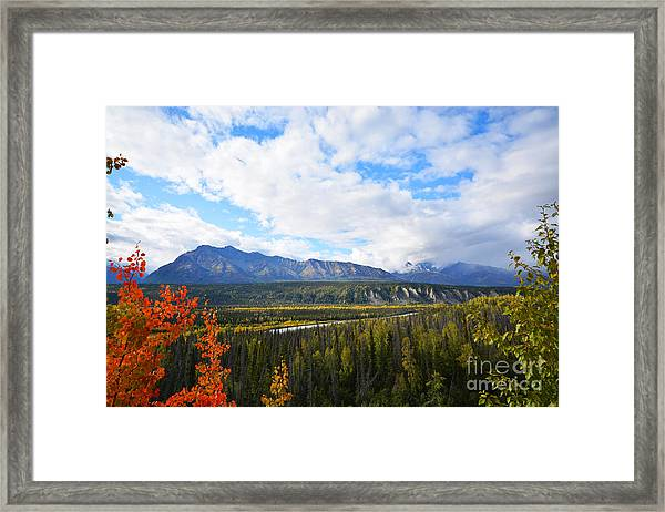 Framed Print featuring the photograph Alaska by Kate Avery