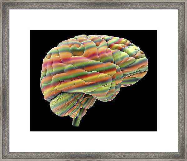 Brain Framed Print