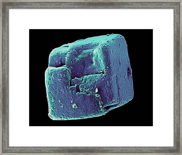 Table Salt Crystal (nacl) Framed Print