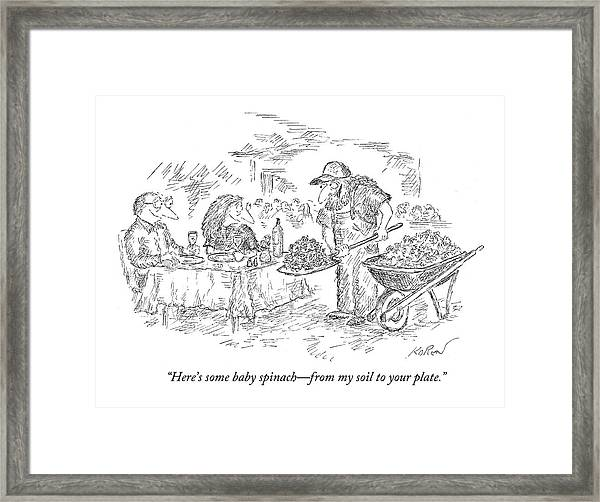 Here's Some Baby Spinach - From My Soil Framed Print