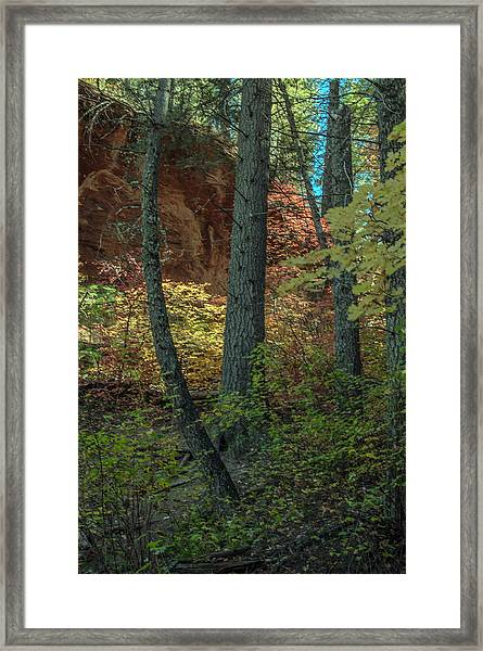 West Fork Fall Color Framed Print