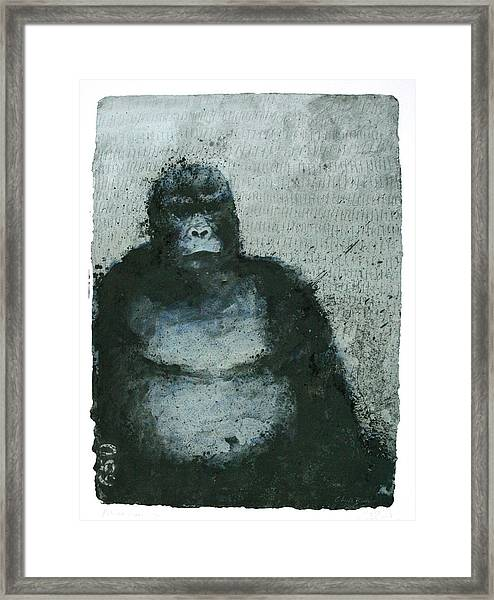 650 Mountain Gorillas, 2008 Mixed Media Framed Print