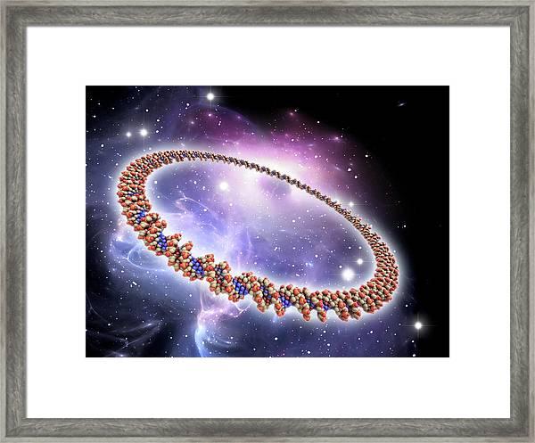 Circular Dna Molecule Framed Print
