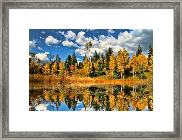 Fall Refelctions Framed Print