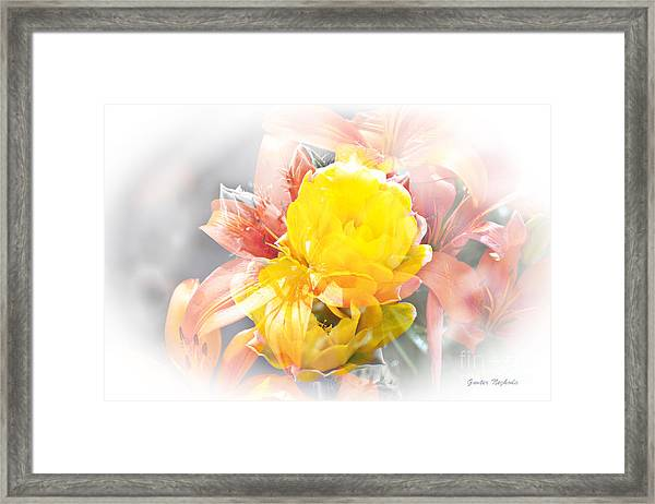 Flower Burst Framed Print
