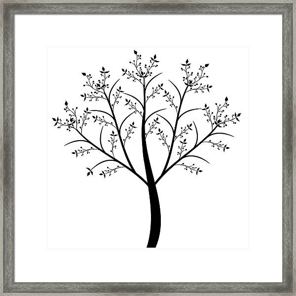 Olive Tree Framed Print by IB Photography