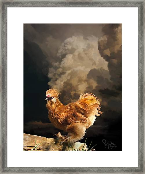 7. Thunder Buff Framed Print