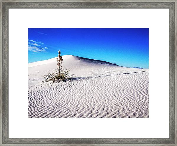 Usa, New Mexico, White Sands National Framed Print by Terry Eggers