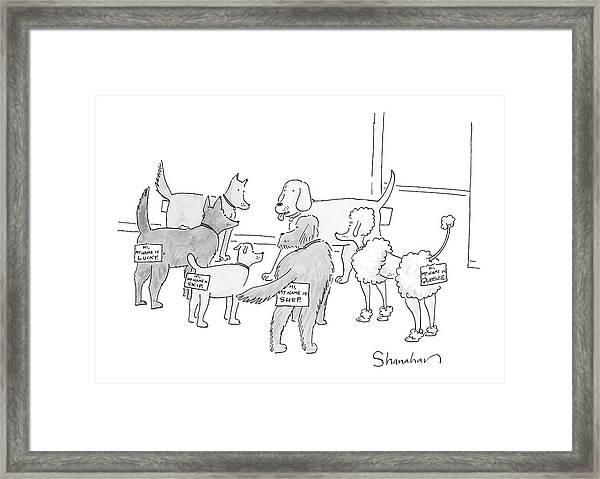 New Yorker September 17th, 2007 Framed Print