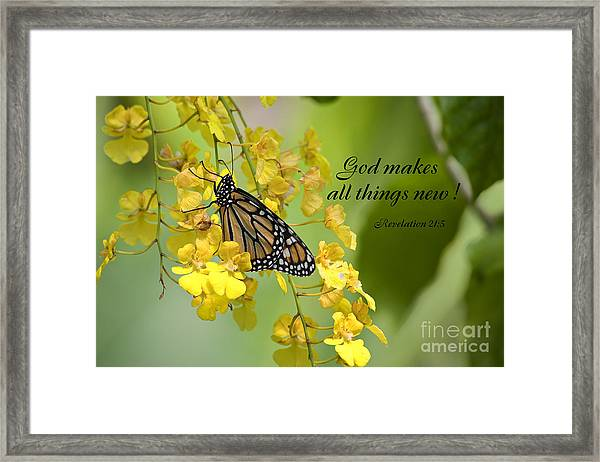 Butterfly Scripture Framed Print