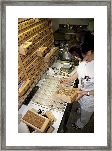 Kampo Japanese Traditional Medicine Framed Print