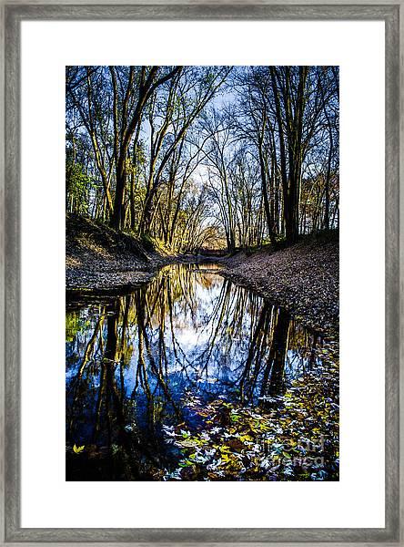 Treasure Of Leaves Framed Print