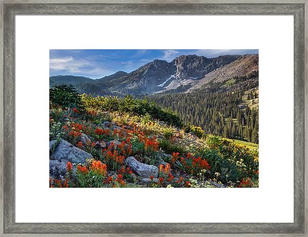 Wasatch Mountains Of Utah Framed Print