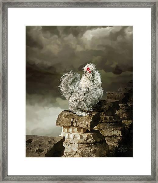 9. Cuckoo Angela Framed Print