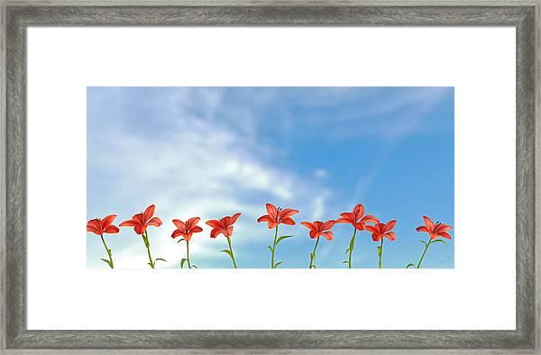 9 Lilies Framed Print