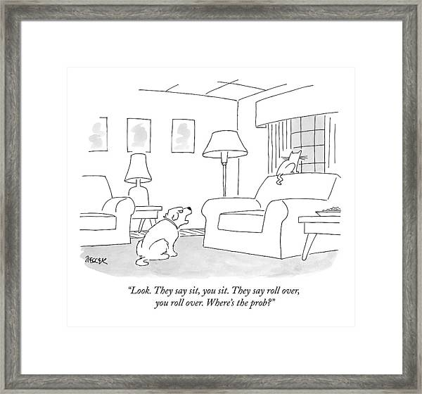 Look. They Say Sit Framed Print