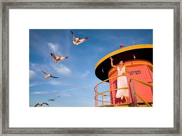 9803 Framed Print