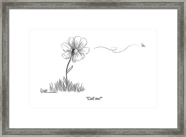 A Bee Flying Away From A Daisy After Pollination Framed Print