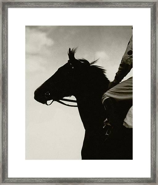 A Black Racehorse Framed Print