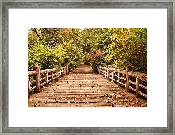 A Bridge Into Autumn Framed Print by Zev Steinhardt