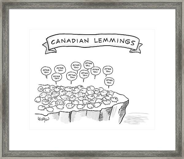 A Bunch Of Lemmings On A Cliff Saying After You Framed Print