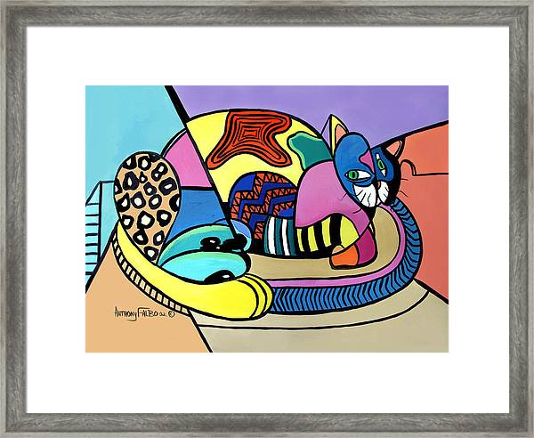A Cat Named Picasso Framed Print