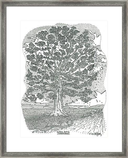 A Change Of Seasons Framed Print