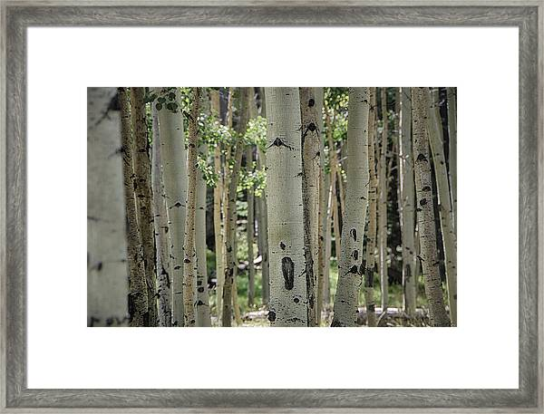 A Change Of Weather  Framed Print