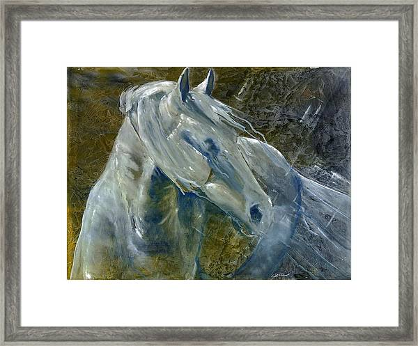 A Cool Morning Breeze Framed Print