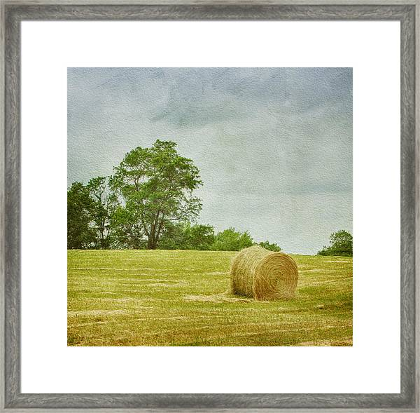 A Day At The Farm Framed Print