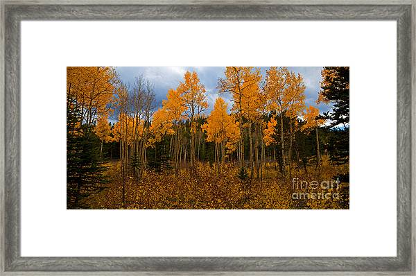 A Different Kind Of Fire Framed Print