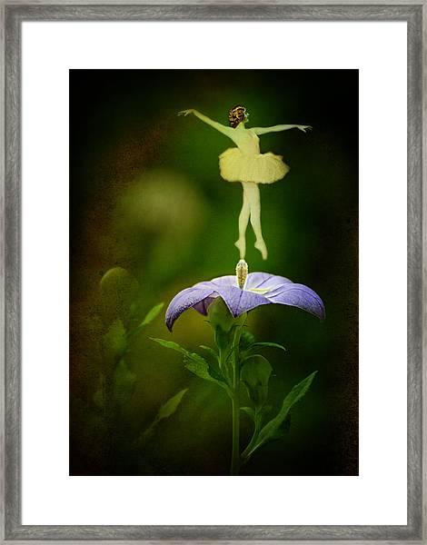 A Fairy In The Garden Framed Print