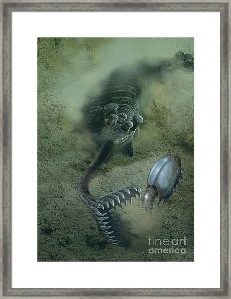 A Fearsome Opabinia Found In The Middle Framed Print