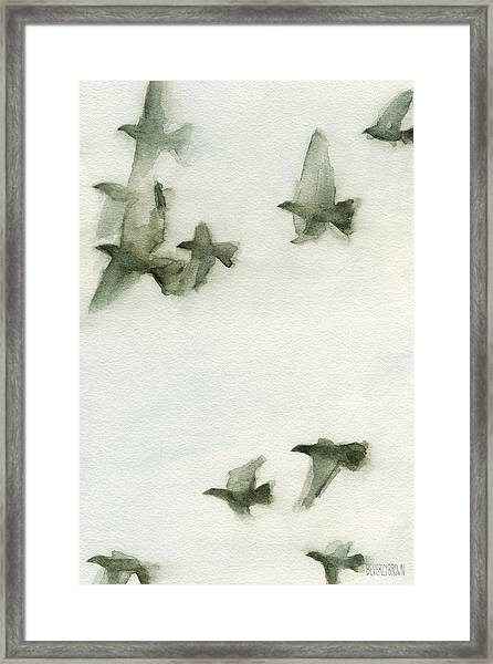 A Flock Of Pigeons 2 Watercolor Painting Of Birds Framed Print