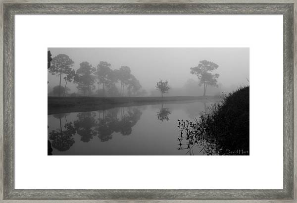 A Foggy Morning Framed Print