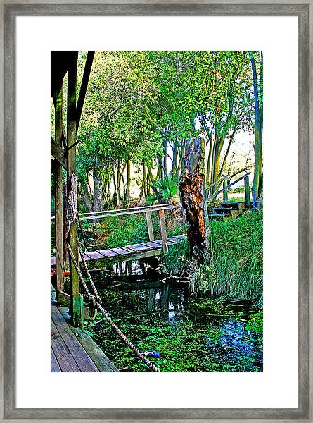 A Forgotten Delta Dock Framed Print
