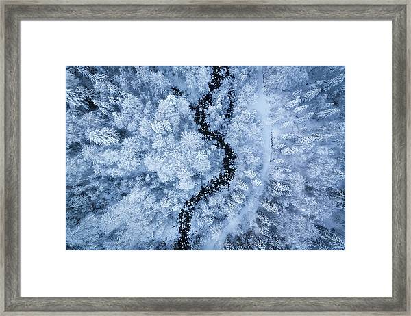 A Freezing Cold Beauty Framed Print